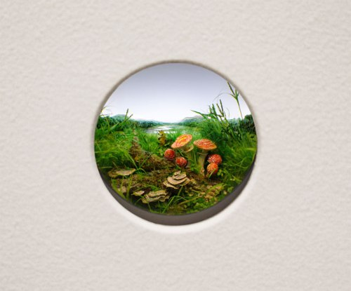 "Patrick Jacobs - ""Fly Agaric Mushroom Cluster #9,"" 2014, Styrene, acrylic, cast neoprene, paper, ash, talc, starch, polyurethane foam, acrylite, vinyl film, wood, steel, lighting, BK7 glass. Diorama viewed through 2 inch (5 cm) window.  Interior box dimensions: 11.25 x 14.75 x 9.25 inches (29 x 37 x 24 cm). Sold"