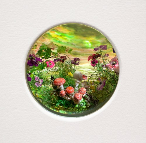 """Patrick Jacobs - """"Fly Agarics with Sickle Moon,"""" 2020, Diorama viewed through 2.75 inch window, Styrene, clay, paper, foam, wood, acrylic, steel, lighting, BK7 glass. Box dimensions: 11 (H) x 14.5 (W) x 9.25 (D) inches (28 x 37 x 23 cm)"""