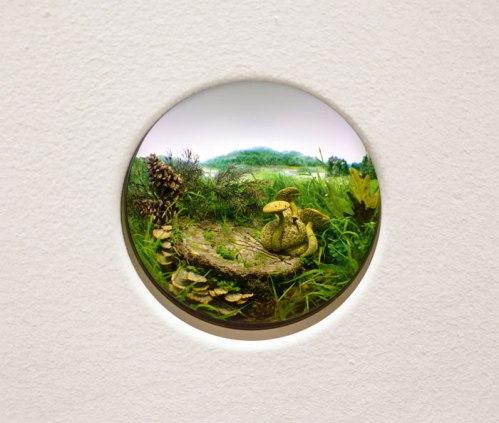 "Patrick Jacobs - ""Parasitic Bolete with Brackets and Pine Cones,"" 2014, Styrene, acrylic, cast neoprene, paper, ash, talc, starch, polyurethane foam, acrylite, vinyl film, wood, steel, lighting, BK7 glass. Diorama viewed through 2.75 in. (7 cm) window. 12.75 x 18.5 x 11.5 in. (32.4 x 47 x 29.2 cm)."