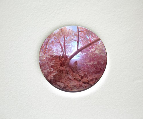"""Patrick Jacobs - """"Study for Pink Forest,"""" 2016, Styrene, acrylic, cast neoprene, paper, hair, polyurethane foam, ash, talc, starch, acrylite, vinyl film, copper, wood, steel, lighting, BK7 glass Diorama viewed through 2.75 in. (7 cm) window. Interior box: 14.75 (W) x 11.25 (H) x 9.25 (D) inches Sold."""