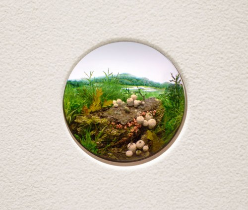 "Patrick Jacobs - ""White Puffball Mushroom Cluster with Wolf's Milk Slime Mold,"" 2014, Styrene, acrylic, cast neoprene, paper, ash, talc, starch, polyurethane foam, acrylite, vinyl film, wood, steel, lighting, BK7 glass. Diorama viewed through 2.75 inch (7 cm) window. Interior box dimensions: 12.75 x 18.5 x 11.5 inches (32.4 x 47 x 29.2 cm). Sold"