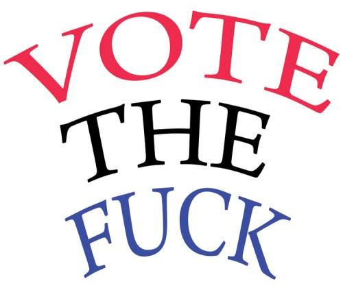 """Nina Katchadourian - """"Vote the Fuck"""""""