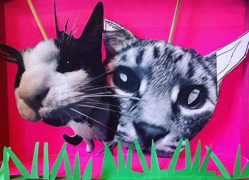 Laura Miller - Cat Puppets