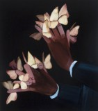 Moth Hands - 2010, Acrylic on canvas over panel, 17 x 15 inches