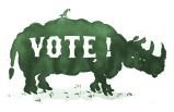 David Scher - Vote!