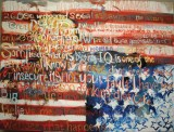 "Meredith Thompson - ""National Insecurity"""