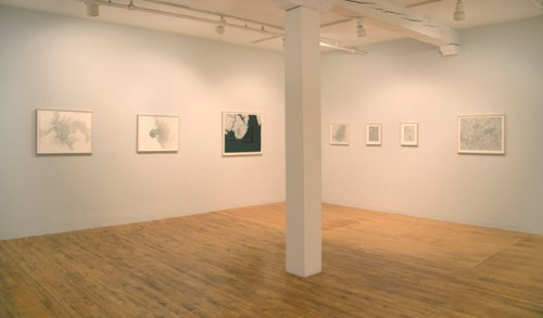 Immiscible Cohesion - Installation view, 2015