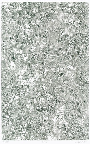 Entropy - 2010, Etching on Rives BFK heavyweight, Edition 35, 20.5 x 15 inches, Plate size: 14 x 9 inches