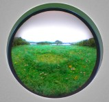 Fairy Ring with White Clover
