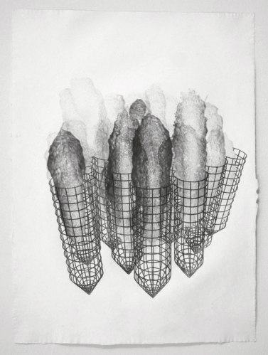 Tubular Cages - 2011, Graphite on paper, 29 x 21 1/2 inches