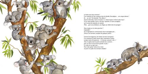 Les Animaux_editions du Ricochet1