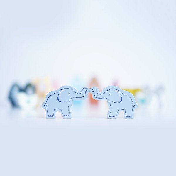TV212-Noah_s-Ark-Shape-Sorter-elephants