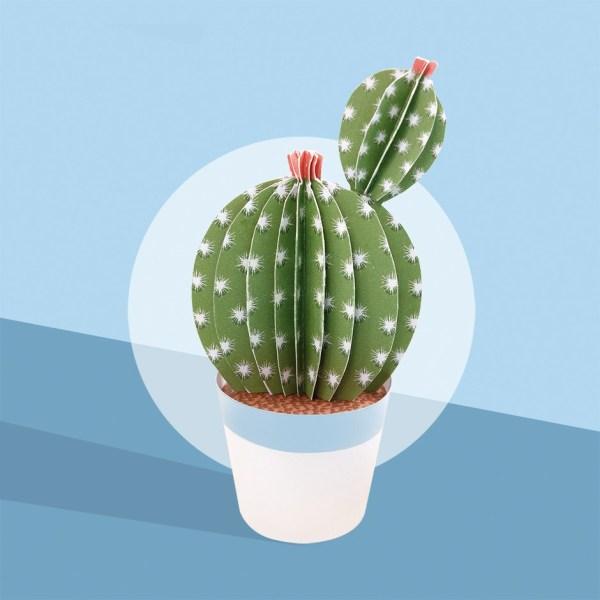 les-petits-cactusT