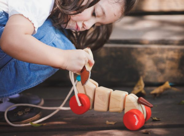 5101_PlanToys_HAPPY_PUPPY_Push_and_Pull_Gross_Motor_Coordination_Imagination_12m_Wooden_toys_Education_toys_Safety_Toys_Non-toxic_1