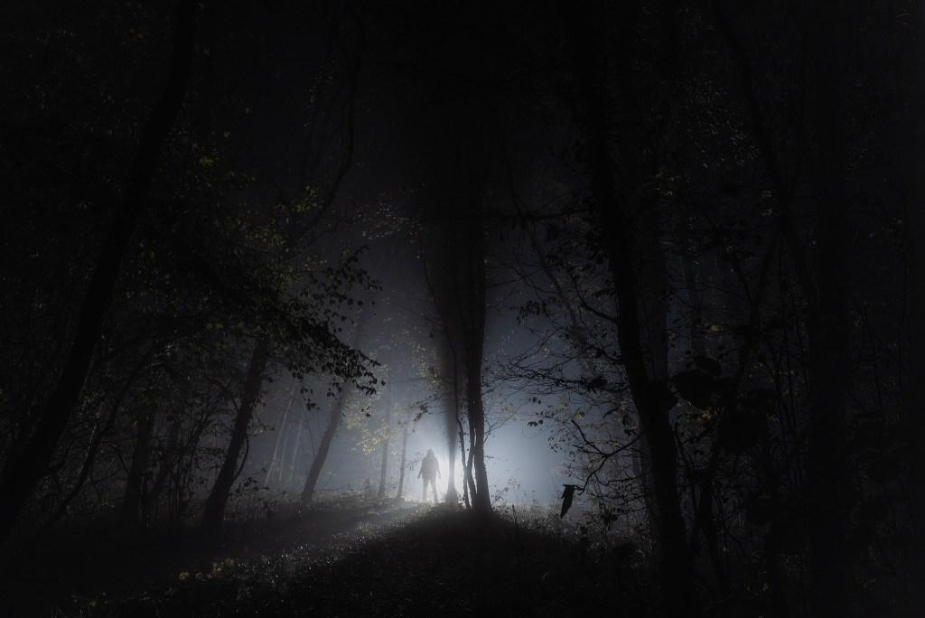 Silhouette dans le brouillard de nuit en forêt   Paysages nocturnes © Pierre ROLIN - Photographe Nancy - Lorraine / Grand Est