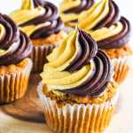 Chocolate Pumpkin Cupcake
