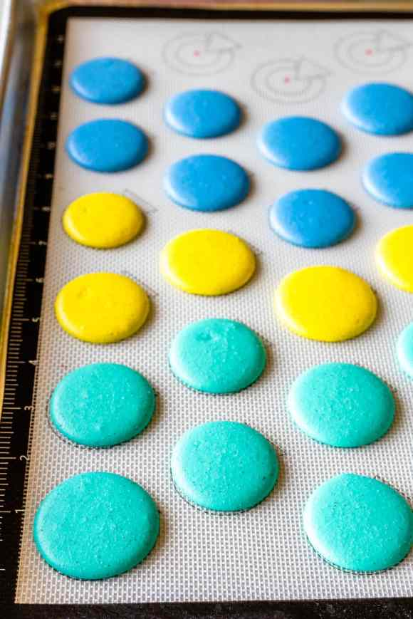 blue, yellow, and teal macaron shells piped, before baking, on a baking sheet with a macaron mat