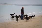 Michiel met de hondjes