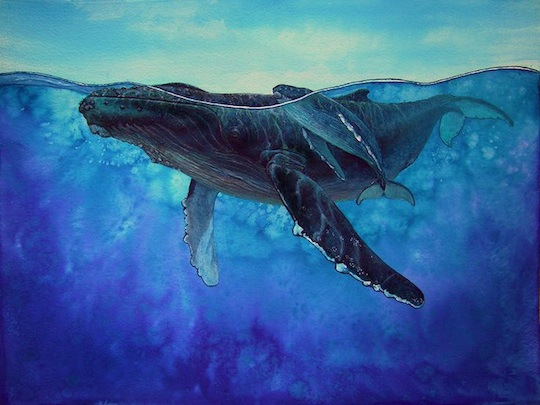 whale-painting-whale-illustration