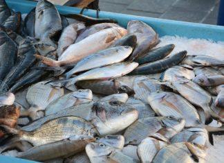 dove mangiare marsiglia pesce fresco