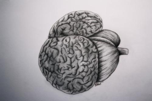 Anatomy Pietro Saviano