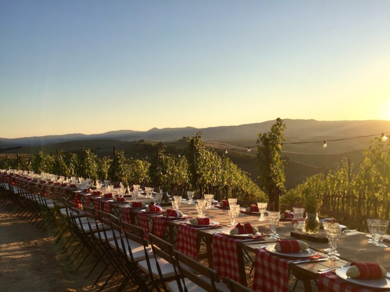 pievedepitti_wedding_vineyard44