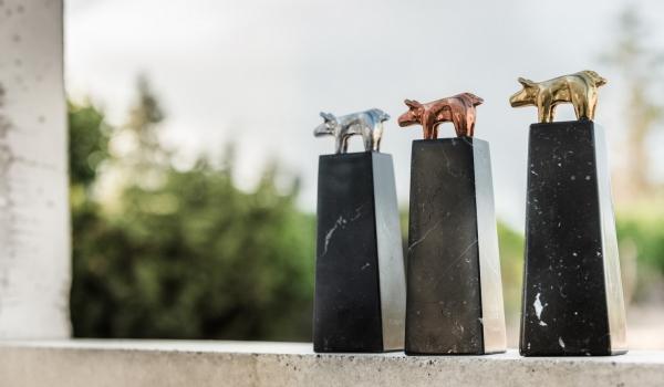 Estatuillas premios Porc dOr. Fuente: http://www.agronewscastillayleon.com/