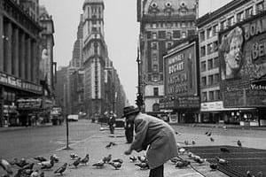 man feeds pigeons in times square