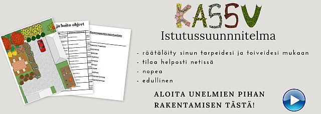 Tilaa Kassu istutussuunnitelma