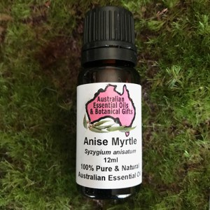 Anise Myrtle