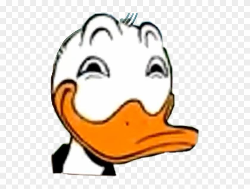 Donald Trump Donald Duck Memes