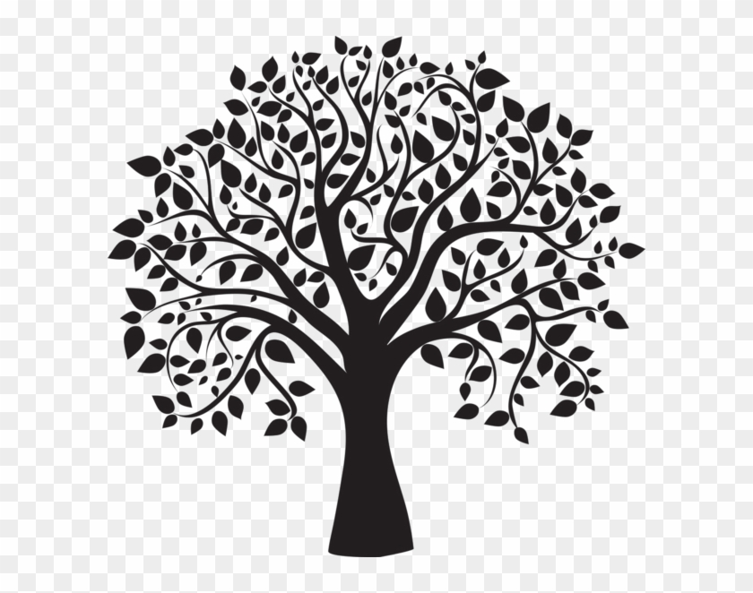 Arbre Silhouette Png Tree Clipart Black And White Transparent Png 4697715 Pikpng