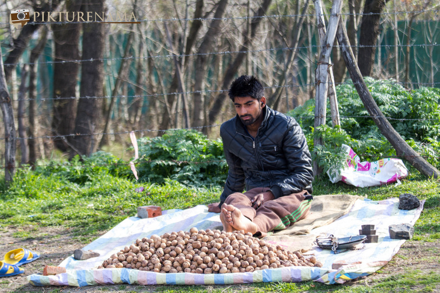 Faces of Kashmir Srinagar 38