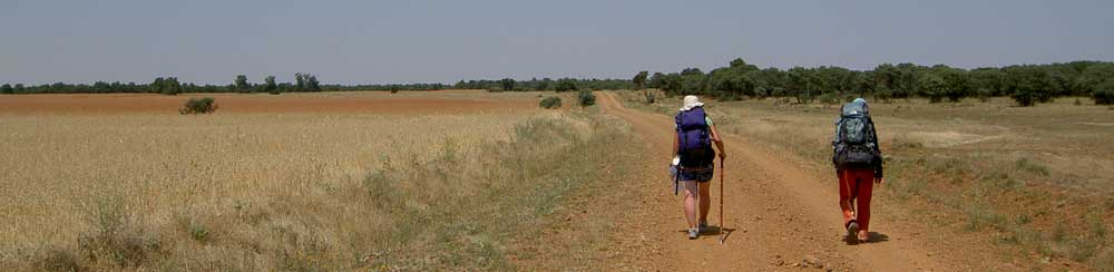 Pilgerreisen - hier - Jakobsweg Meseta Spanien