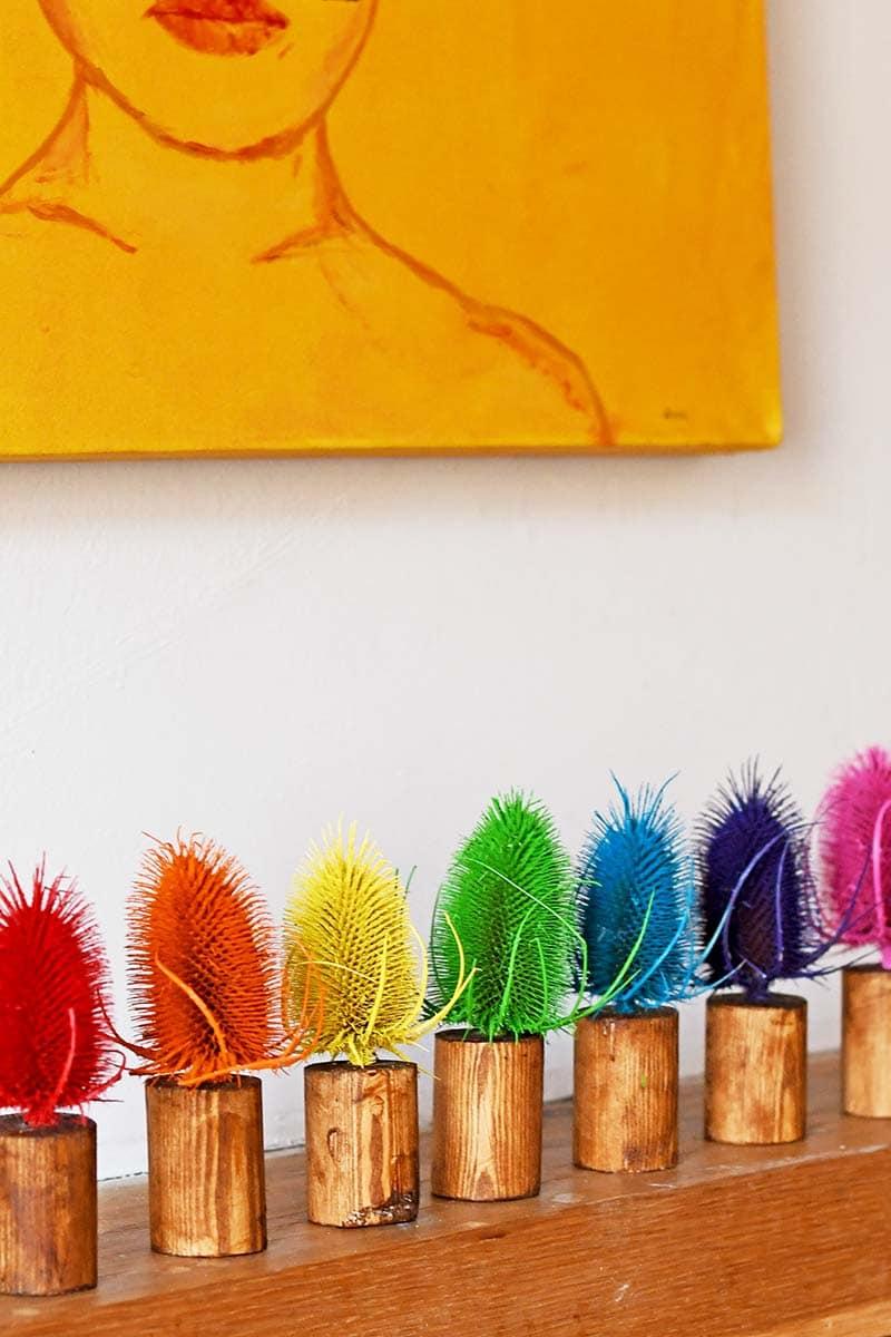 DIY Rainbow Thistle Decoration