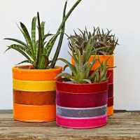 How To Make Trendy Upcycled Planters With Velvet