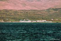 Ardberg - Islay