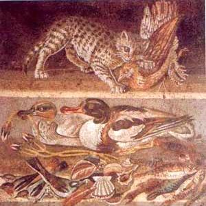 Le carni derivate dalla cacciagione erano amate dai Romani