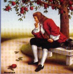 Newton mela