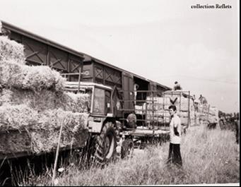 1976, l année de la sécheresse