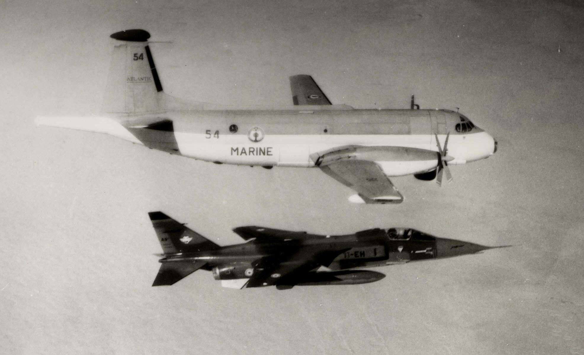 Opération Lamantin menée conjointement par les Jaguar et les ATL