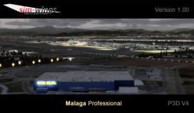 Lotnisko-Malaga-professional