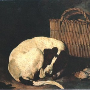 Arcangelo Resani (Roma, 1670 – Ravenna, 1740), Cane e sporta