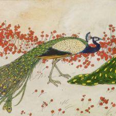 Francesco Nonni (Faenza, 1885 - 1972), Fanciulla con pavone