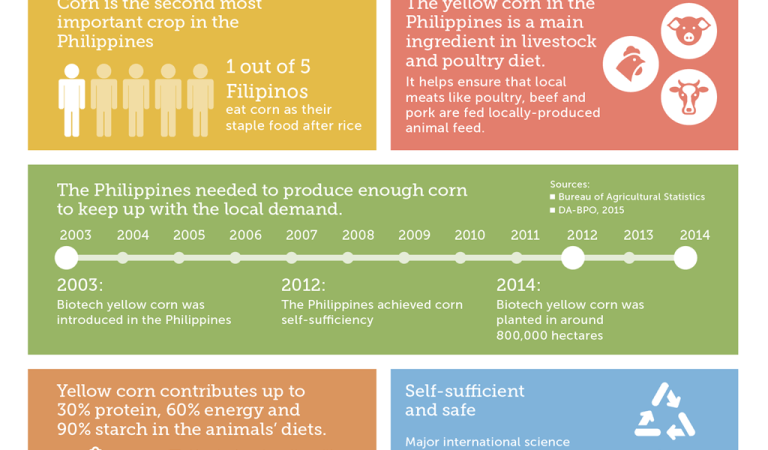 At the cob of the matter: Corn in the Philippines