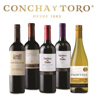 Classy Options for Every Type of Connoisseur from the Finest Wines of Chile, Concha Y Toro