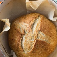 Rosemary Thyme No-Knead Dutch Oven Bread