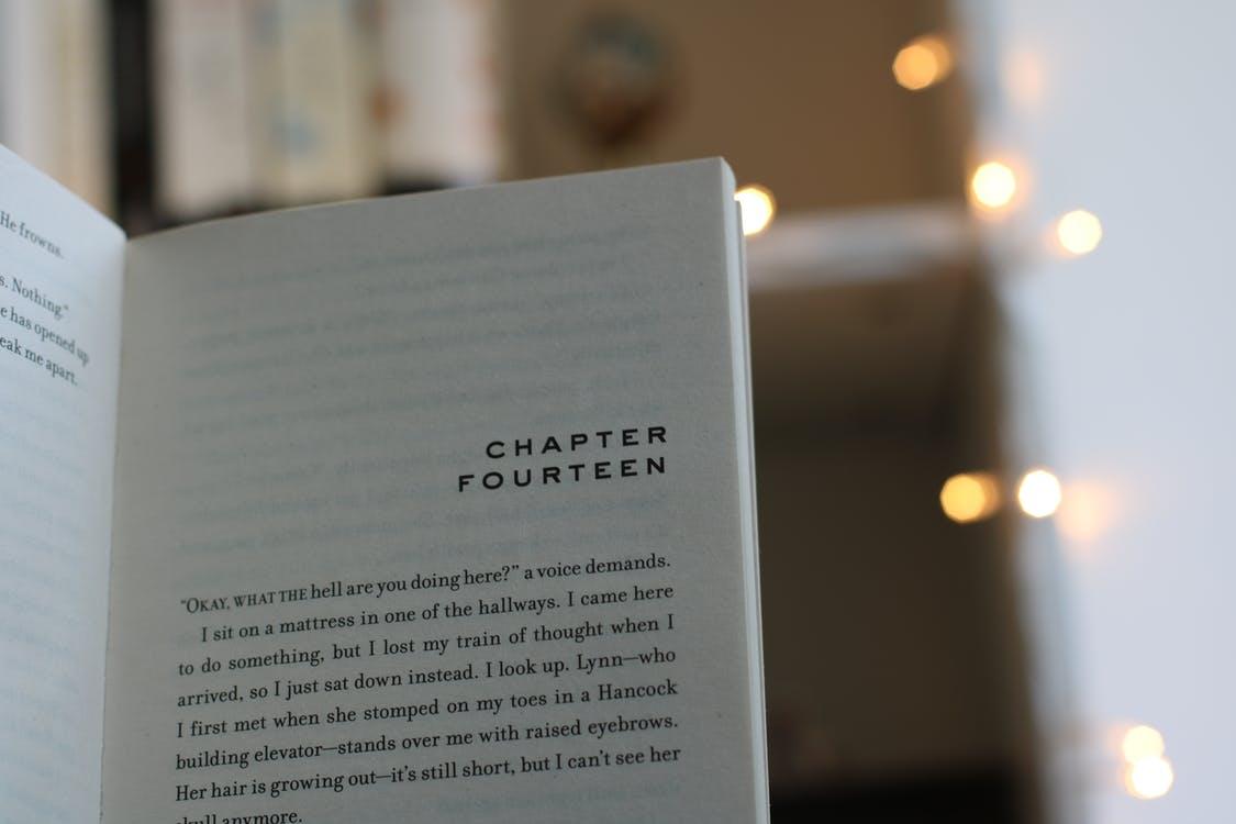 Mijn leesdoel voor 2019: ik ga 35 boeken lezen