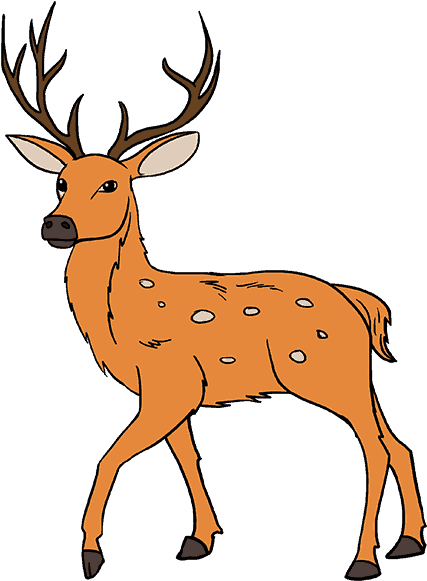 White Tailed Drawing Draw Deer Step By Step Clipart Full Size Clipart 380865 Pinclipart