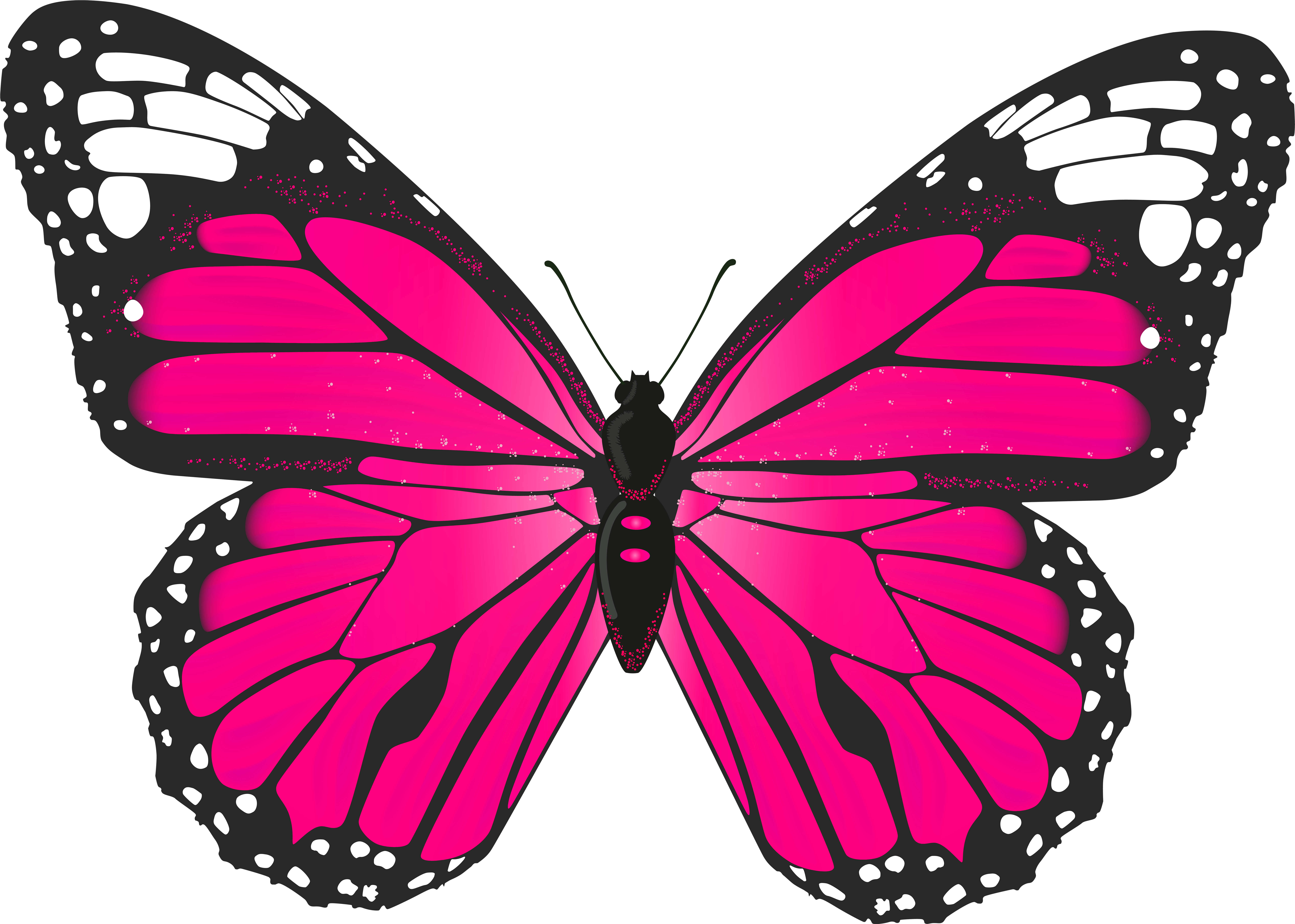 Butterfly Clip Art Pink Butterfly Clipart Png Transparent Png Full Size Clipart 65608 Pinclipart